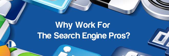 Why Work For The Search Engine Pros