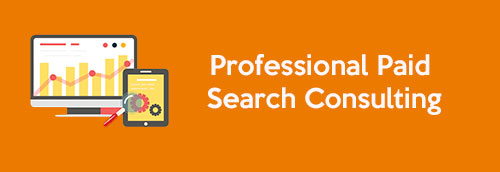 Professional Paid Search Consulting