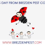 Pest Control Marketing Online